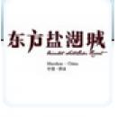 东方盐湖城旅游发展有限公司logo