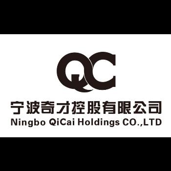 宁波奇才控股有限公司logo