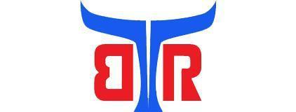 布法罗机器人科技(成都)有限公司logo