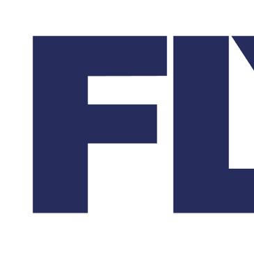 温州飞叶有限公司logo