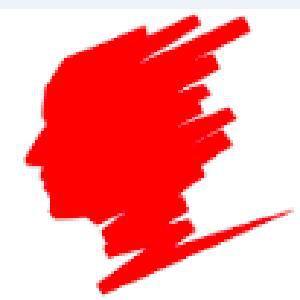 北京柏焓咨询有限公司logo