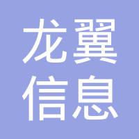 河南龙翼信息技术有限公司logo