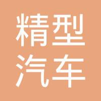 顺德精型汽车模具有限公司logo
